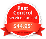 ameri tech pest control dallas fort wporth tx